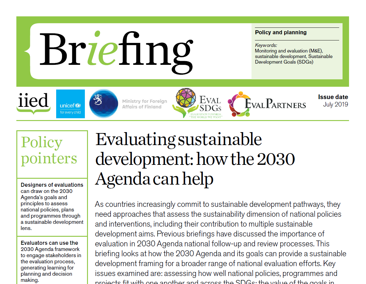 Briefing Paper 12 – Evaluating sustainable development: how the 2030 Agenda can help